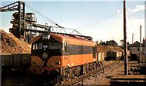 S8513 : Beet train, Wellingtonbridge by Albert Bridge