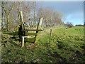 SE0320 : Stile on Ripponden Footpath 15, Soyland by Humphrey Bolton