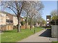 SK5638 : Kirkwhite Walk by Alan Murray-Rust