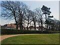 TQ2906 : NE corner of Hove Recreation ground by Paul Gillett
