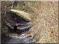 SU9017 : Sunken Bridleway by Colin Smith