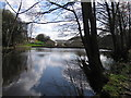 SK3189 : Mill pond, Wisewood by Rudi Winter