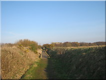 NZ2796 : Public footpath from Widdrington to Druridge Links by peter robinson