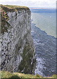 TA1974 : Cliff face, Bempton by Pauline E