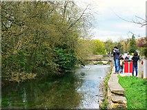 SP1106 : River Coln, Bibury, Gloucestershire by Brian Robert Marshall