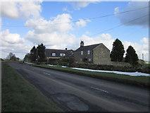 NZ0168 : Houses at Halton Shields by Ian S