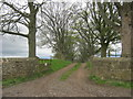 NZ1217 : Bridleway from the road in Little Newsham by peter robinson
