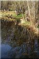NT7027 : The River Teviot at Kalemouth by Walter Baxter