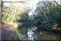 SU7952 : Basingstoke Canal by N Chadwick