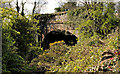 J4054 : Old railway bridge near Saintfield (2) by Albert Bridge