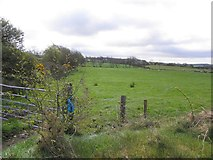 H5559 : Garvaghy Townland by Kenneth  Allen