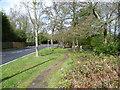 TQ3664 : Path alongside Shirley Church Road by Marathon