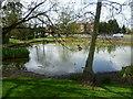 TQ3461 : Sanderstead Pond by Marathon