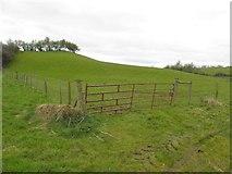H5371 : Hillock, Bancran by Kenneth  Allen
