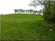 H5371 : Bancran Townland by Kenneth  Allen