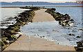 J4968 : Causeway to Rough Island (12) by Albert Bridge