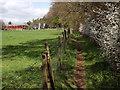 TQ0447 : Path by Blackheath Lane by Colin Smith