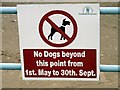 SD3128 : No Dogs by Gerald England