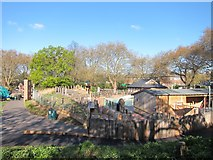 TQ2883 : Penguin enclosure at London Zoo by Oast House Archive