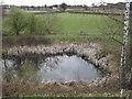 TQ0646 : Pond Below Ponds Farm by Colin Smith