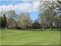 NZ2465 : Brandling Park by Mike Quinn