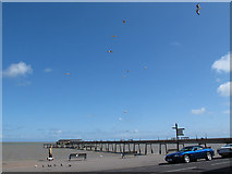 TR3752 : Gulls circling near the pier by Stephen Craven