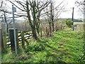 NZ1948 : Bridleway sign on footpath, by Holmside Lane by Christine Johnstone