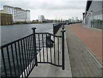 TQ4180 : Royal Victoria Dock by Marathon
