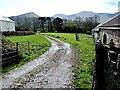 R8729 : Farm Lane by kevin higgins