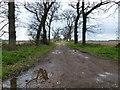 TF8036 : Track near Little Barwick, Norfolk by Richard Humphrey