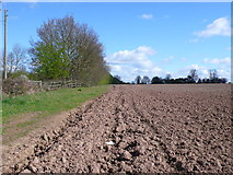 SP3369 : Fields at Cubbington Heath by Nigel Mykura