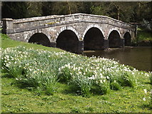 ST7733 : Stone Bridge, Stourhead by Colin Smith