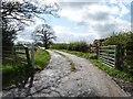 NZ1547 : Track to Margery Flatts, off Newbiggin Lane by Christine Johnstone