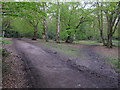 TQ4794 : Footpath junction near Taylor's Plain by Roger Jones