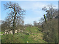 SP9908 : Middle Rampart and Motte of Berkhamsted Castle by Chris Reynolds