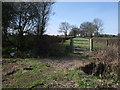 ST9890 : Bridleway to Old Park Farm, near Cloatley by Vieve Forward