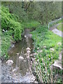 SJ3876 : Rivacre Brook by Sue Adair