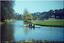 SU9948 : Rowers on the Wey by Colin Smith