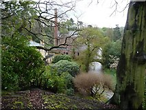 SJ8383 : The River Bollin at Quarry Bank by Christine Johnstone