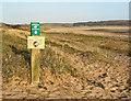 SS8477 : Track and signage by Traeth yr Afon by eswales