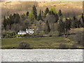 NN4610 : The Northern Bank of Loch Katrine, Letter by David Dixon
