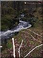 NM8564 : Allt Coire nan Capull, Ariundle by Peter Bond