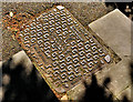 "J4079 : Glynwed Brickhouse ""Valiant"" access cover, Holywood by Albert Bridge"