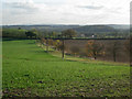 SP1463 : Field boundary south of Wootton Hill Farm by Robin Stott