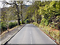 NS3592 : Old Military Road  From Luss by David Dixon