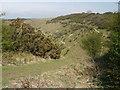 SU7120 : Path towards Ramsdean Down by Peter S