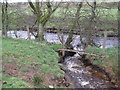 NY5179 : Confluence of Hollincleugh Cleugh and Bailey Water by Les Hull