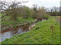 NS4831 : Beside Cessnock Water by wfmillar