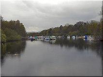 NS3882 : River Leven, Balloch by David Dixon
