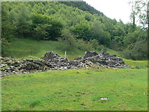 SN7079 : Ruin at the bottom of Coed Pant Mawr by Eirian Evans